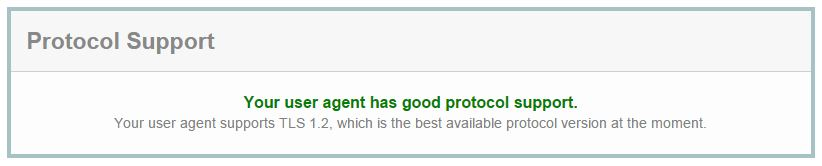 Your user agent has good protocol support